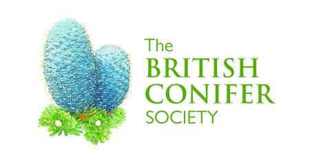 britishconifersociety